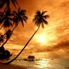 La Playa - Alejandro Cifuentes (Mashup Private)*FREE DOWNLOAD click BUY*