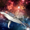 ENDGAME - Space Whale Giving Birth Instrumental