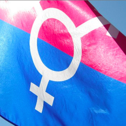 Transgender Representation in Pop Culture
