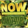 Now Thats What I Call Fucking Jungle - DJ Brownie - FREE DOWNLOAD