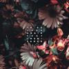 Download Love Again feat JMSN + Sango - Ta-ku (Liquid dnb mix) Mp3