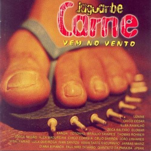 Vem no Vento (2003)