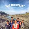 Shaggy dog - Di Syaidan (Cover) Mbrodol Bend