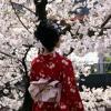 Weekend Passport: Japanese kimono exhibit and the Puerto Rican People's Circus