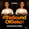 DJFITZZY - #TheSoundOfGeko PART 1