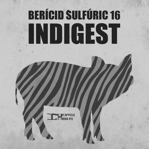 16 - Indigest