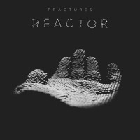 Fractures - Reactor