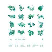 CFCF - Rain Dance