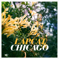 Lapcat Chicago Artwork