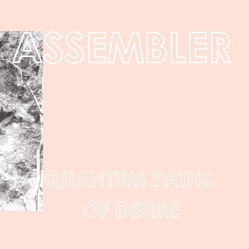 Assembler - SCHIZO - EXSTATIC I/O