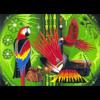 Richard Cummings Crow Tune 04/23/97