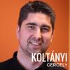 Fájdalmas pontok - interjú Koltányi Gergellyel