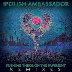 The Polish Ambassador - Vision Fiberoptics Ft Sean Haefeli (Froogle Revibe)