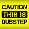 THIS IS DUBSTEP  |  2011 Style Dubstep (Free Download)