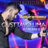 Dj Nelson Fonseca Feat Gustavo Lima- Se E Pra Beber Eu Bebo (Remix 2015)