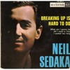 Neil Sedaka - Breaking Up Is Hard To Do (Cover)