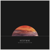 Intertwine We Are Fools For Singing This Song Artwork