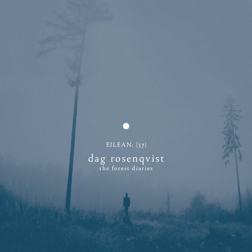 Dag Rosenqvist - The Forest Diaries (album preview)