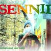 Sennid+Shan a Shan -Trod!! by SENNID