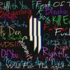 Skrillex - Live @ Hangout Fest - 2015