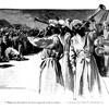 Seminer Yasa | Musanın Yasası