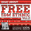 FREE Ethnic EDM Vol. 2 [10 Construction Kits, Dry / Wet Loops, Samples, MIDI]