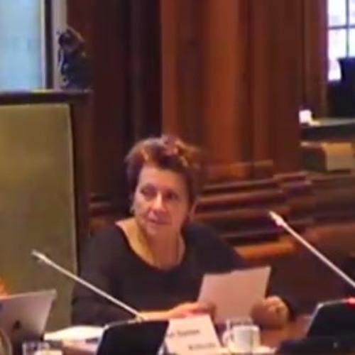 2015 - 06 - 25 Voorzitter Wils Spies Van De Buurtvereniging De Kooi Over De Centrale Blokken