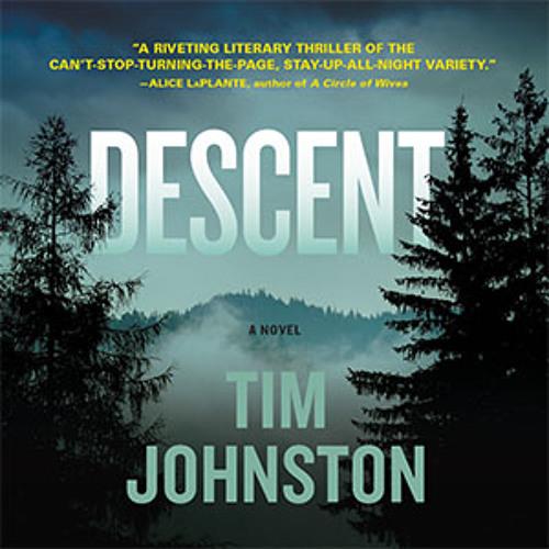 Descent by Tim Johnston - Excerpt