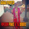 Paperboy Prince of the SUburbs (Peewee Longway Sneakin N Geekin)