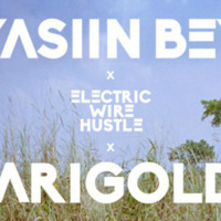 Yaslin Bey x Electric Wire Hustle Marigolds Artwork