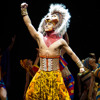 The Lion King musical is in Perth and what about the infamous plane performance by the cast?