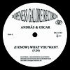 András & Oscar - (I Know) What You Want