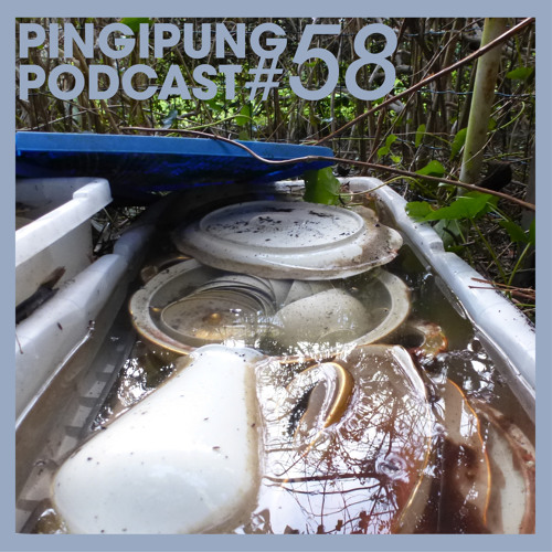 Pingipung Podcast 58: DJ Marcelle / Another Nice Mess - Preparing Podpungi Castping