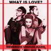 Deee Lite Ft. Jackinsky, S. O. & D. F. VS. E. Pride - What Is Love? (Wemerson Vougan WorkMash!)