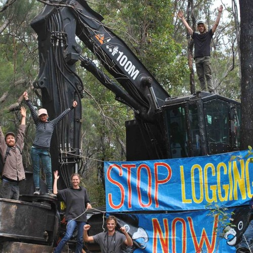 Simone Van Hattem with the latest on the Protect Peaceful Protest campaign in WA