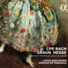CPE BACH - Sinfonia In A Minor, III. Tempo Di Menuet - Lucile Boulanger & Arnaud De Pasquale