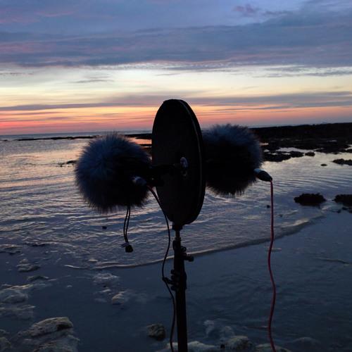 20150628 Sunrise at Botany Bay, Thanet