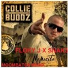 Collie Buddz – Mamacita SNAK3 X FLOKY J Moombaton Remix Preview