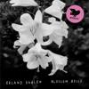 Erland Dahlen: Hammer - from the upcoming album Blossom Bells