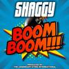 Shaggy - Boom Boom