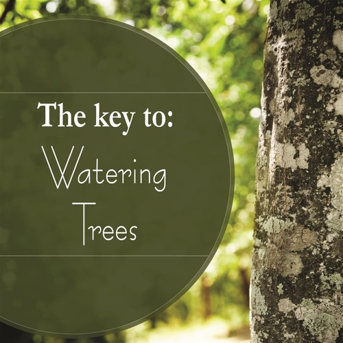 Keys to Watering Trees