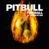 Pitbull Feat. John Ryan Vs. Jesse Kiis - Fireball The Heist (Bsharry Mashup)