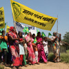 India's Crackdown on Environmentalists
