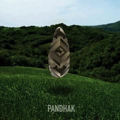 The Ballad Of The Panda - Pandhak