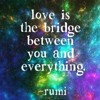 LOVE lifts us up where we belong