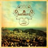 Natiruts - Sorri, Sou Rei |drum cover|