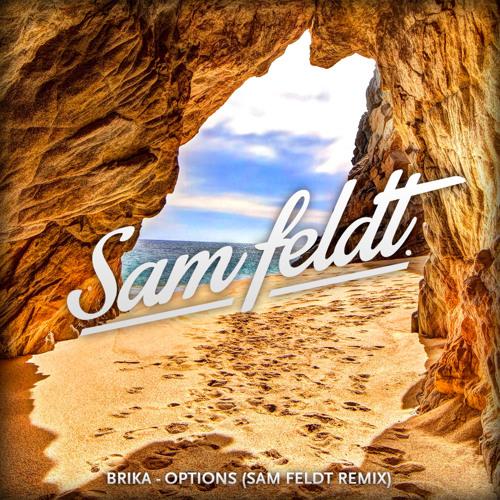 Brika - Options (Sam Feldt Remix) [OUT SOON]