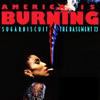 Sugar Biscuit: America Is Burning_7.3.15