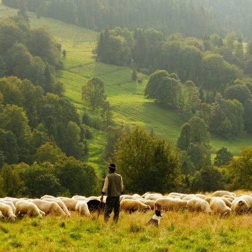 Fantasie über die Schwäbische Alb