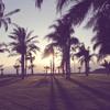 Ruck P - Summer Breeze